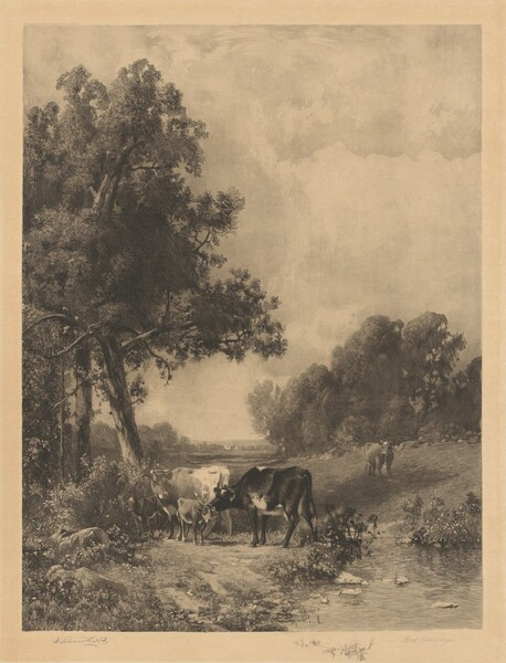 Untitled (Cows And Calves By A Stream)