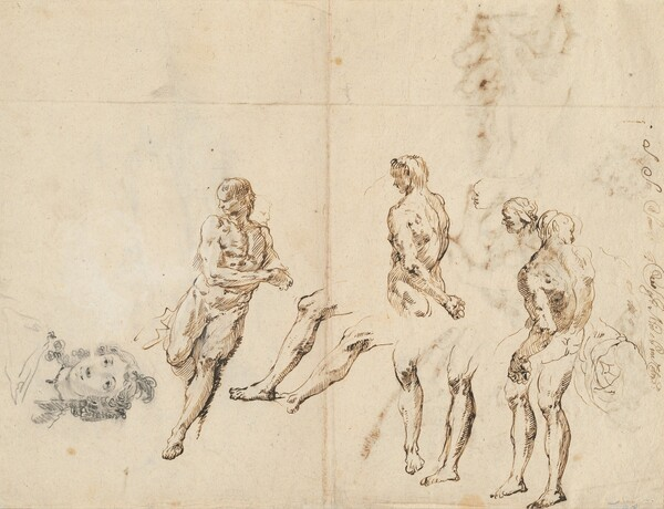 Head of a Woman and Studies of a Male Nude [verso]