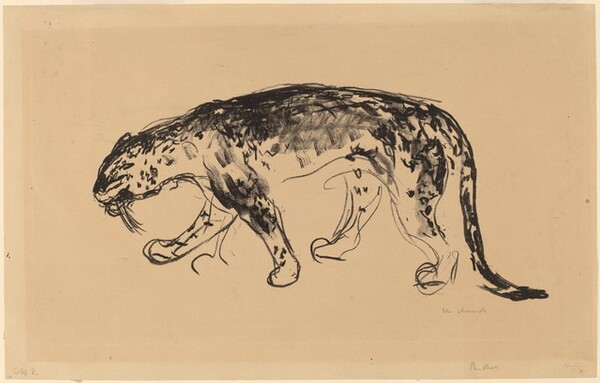 Panther Prowling (Schleichender Panther)