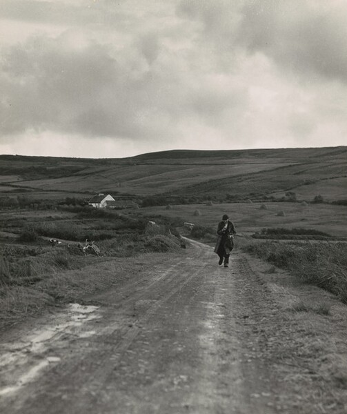 Man walking down a country road from the Kenneally family farm, County Clare, Ireland