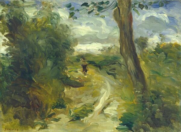Landscape between Storms