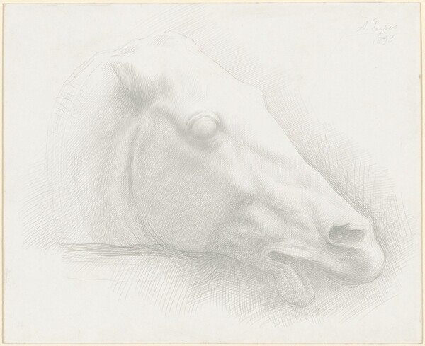 Head of a Horse from the Parthenon