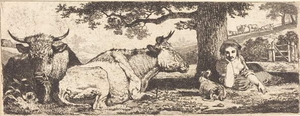 Two Cows and a Woman Lying Down