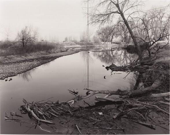 Spring Flood Debris, East of Fort Collins, Colorado (Cache la Poudre River)