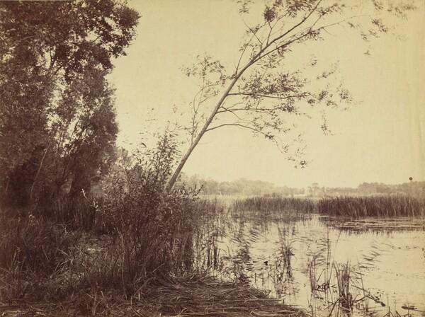 Marais de Fampoux