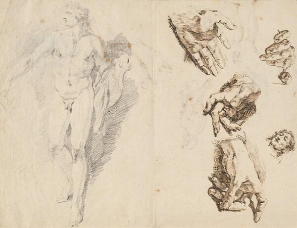 Apollo and Studies of the Artist