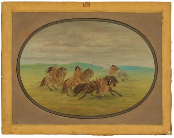 Camanchee Horsemanship