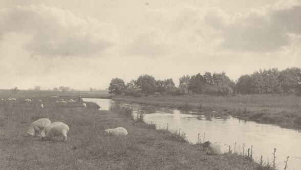 On the River Bure