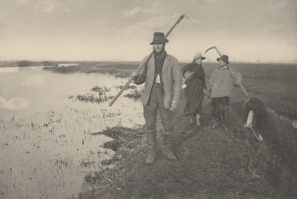 Coming Home from the Marshes