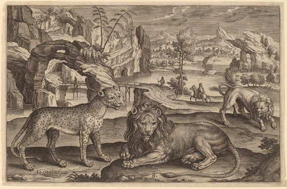 A Leopard and Two Lions