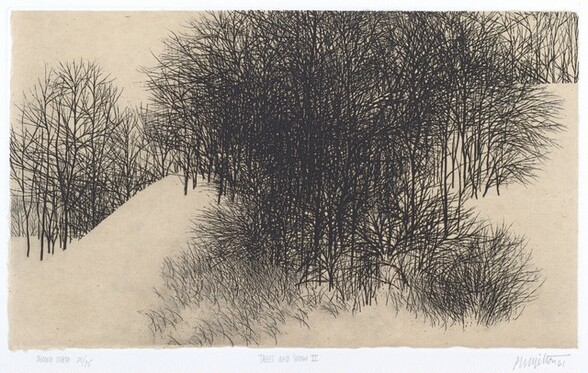 Trees and Snow II (Second State)