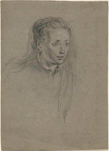 Young Woman with Braided Hair and a Veil