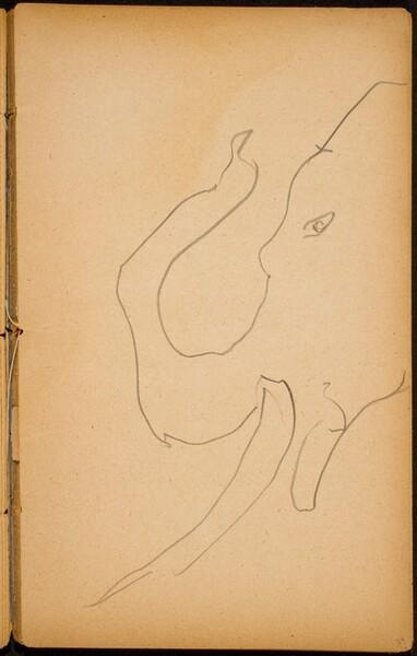 Elefantenkopf (Elephant Head) [p. 33]