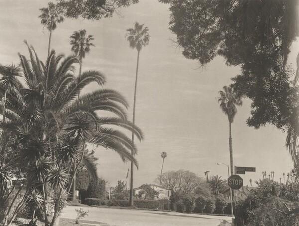 Victoria Avenue/Grandview, Mar Vista
