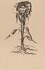 Vignette: Amaryllis