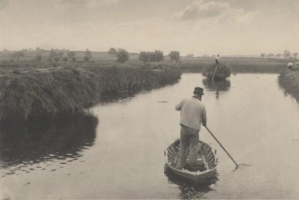 Quanting the Marsh Hay