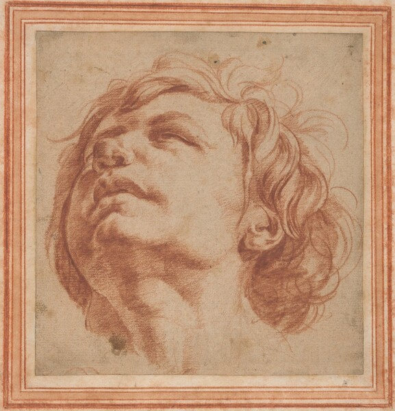Head Study of a Young Man Looking Upward