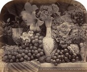 Grapes and flowers arranged on a tabletop in front of a dark background fill this horizontal photograph. The image is monochromatic like a black and white photograph but is printed in warm tones of golden and dark browns. The tabletop runs parallel and close to the bottom edge of the composition. It seems to be made of marble and a striped cloth folds over the front edge of the table to our left. Dark grapes are bunched around a vase at the middle of the composition. Its tall oval body and long, tapering neck are painted with decorative scrolls and curlicues. A few pieces of small round fruit, perhaps plums, rest on the table in front of the vase. A silver goblet to the left and a small figurine of a young boy with a sheaf of wheat to our right are almost lost in the profusion of roses, lilies, hyacinth, and other flowers that fill the space around and behind the objects. The top corners of the photograph are curved to create an arched effect for the composition.