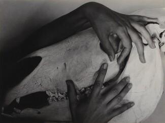 image: Georgia O'Keeffe—Hands and Horse Skull