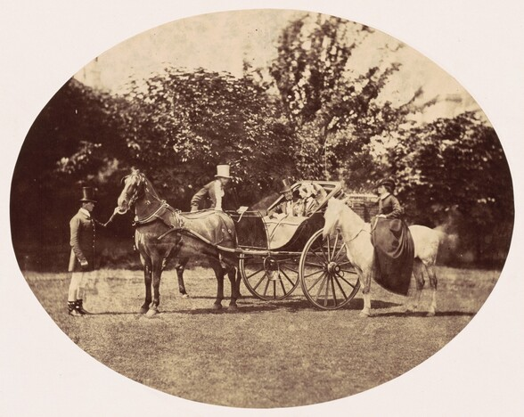 Horse-drawn Carriage and Female Rider