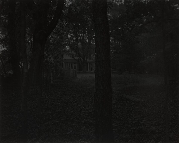 Untitled #2 (Trees and Farmhouse)