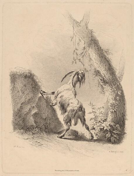 Goat in a Landscape