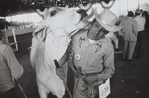 Texas State Fair--Dallas