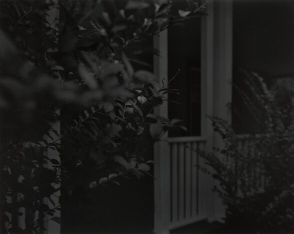 Untitled #4 (Leaves and Porch)