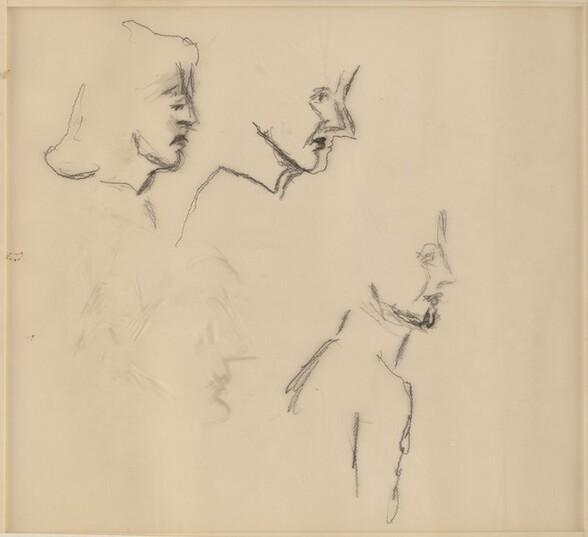 Female Heads in Profile