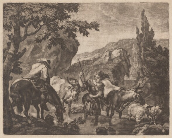 Cattle Fording a Stream