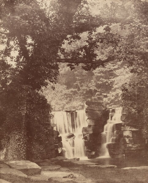The Upper Falls, Penllergare Valley Woods