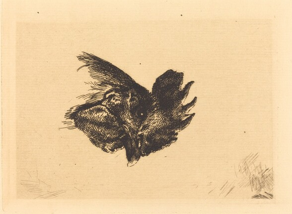 Head of a Cock