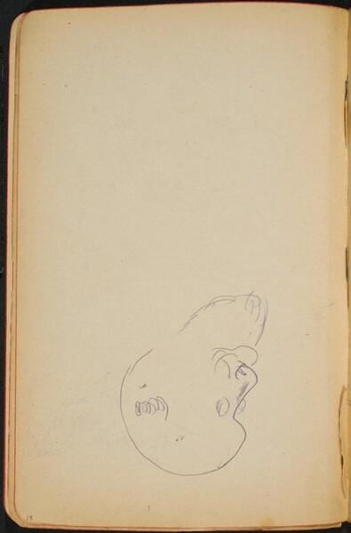 begonnene Skizze eines Mannes mit Bart (Sketch of a Man with a Beard) [p. 18]