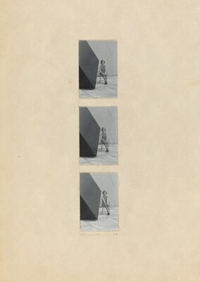 Dorothy Vogel, 7 Sided Figure