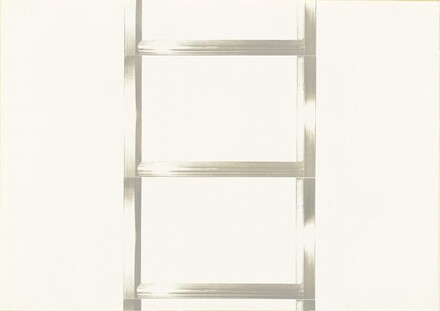 20 Foot Ladder for any Size Wall [II]