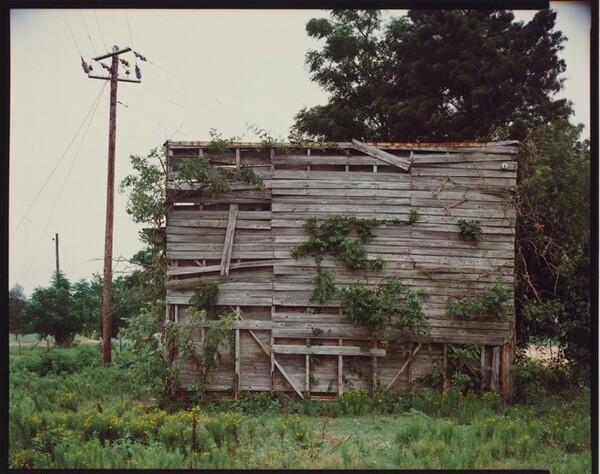 South End of Palmist Building--Havana, Alabama