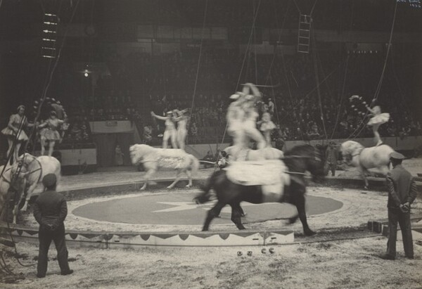 Equestrians, Circus, New York