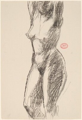 Untitled [head-to-knee view of nude with her arms raised]