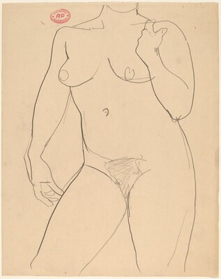 Untitled [chin-to-knee view of nude with her right raised to shoulder]