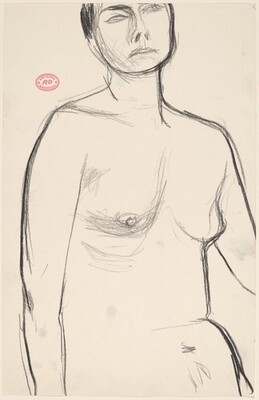 Untitled [view of a female nude from belly to forehead]