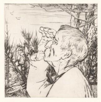 Le Vol de Oiseaux (The Flock of Birds) [plate 8]