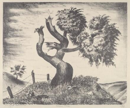 Riven Tree