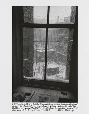 "I got conscious of my kitchen breakfast-table window backyard's seasons' daily view, here morning snow-dropped window-sill, white roofed tool-shed, bare branched ""trees of Heaven"" (ailanthus), fences & fire-escapes lined with snow, N.Y. Times January 23, 1987."