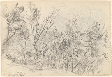 Trees and Cottage [verso]