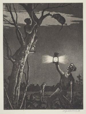 Possum Up De Simmon Tree