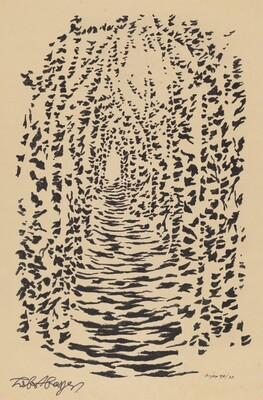 Untitled (Abstract Patterning of Light and Shadow on a Tree-lined Path)