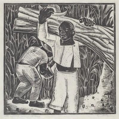 Cane Cutters, Haiti