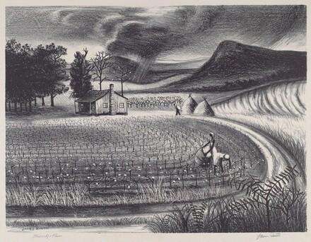 Blueridge Farm