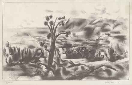 Untitled (Mexican Landscape)