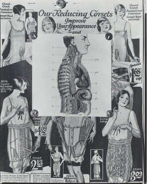 El Sistema Nervioso del Gran Simpatico (The sympathetic nervous system)